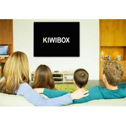 Kiwibox bị treo logo thì phải làm sao?